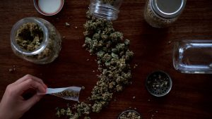 Where in the World is Marijuana Legal?