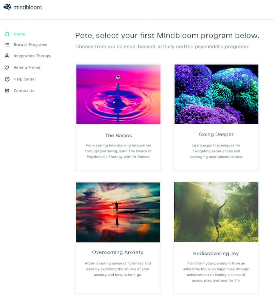 Mindbloom web app