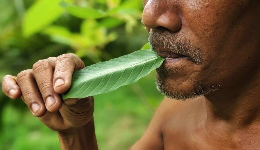 kratom-article-man-eating-leaf-shutterstock_1826712932